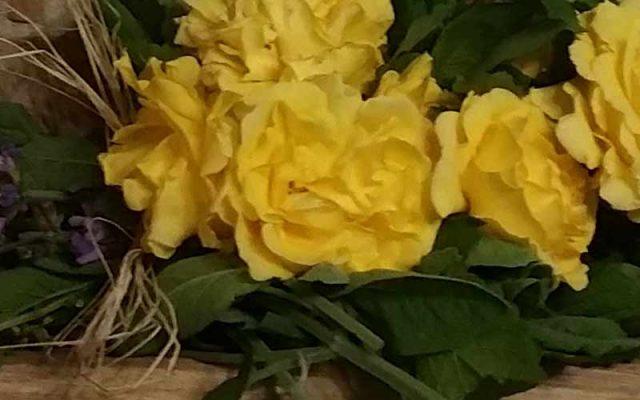 Due Petali Di Rosa