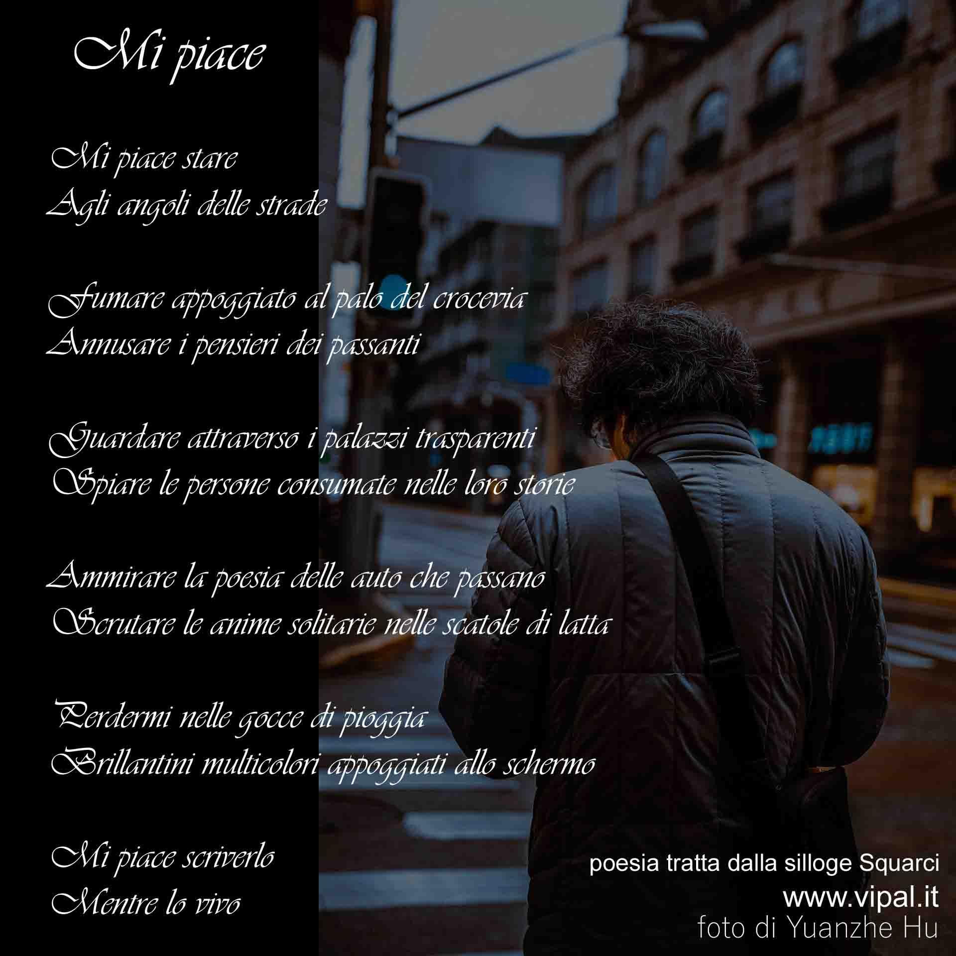 Mi piace testo poesia contenuta nel libro Squarci di Vipal Antonio Gianfranco Gualdi