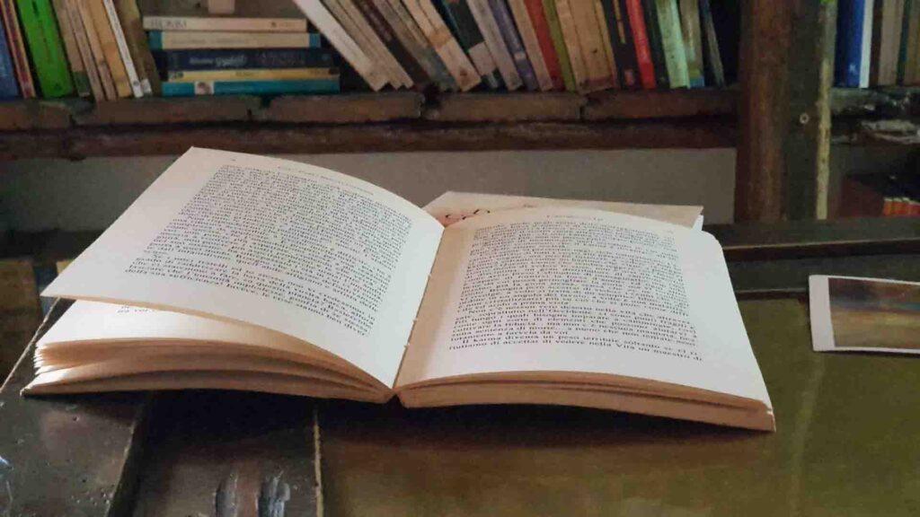 """Foto libro """" Dialogando con il Maestro"""" Vipal Antonio Gianfranco Gualdi"""